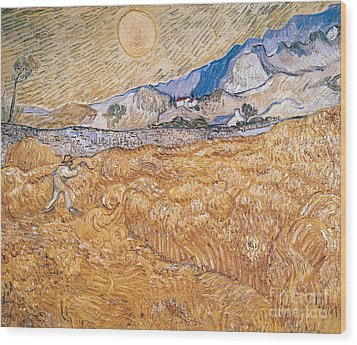 The Harvester Wood Print by Vincent Van Gogh