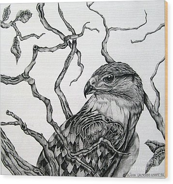 Wood Print featuring the drawing The Hawk by Alison Caltrider