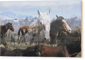 The Herd 2 Wood Print