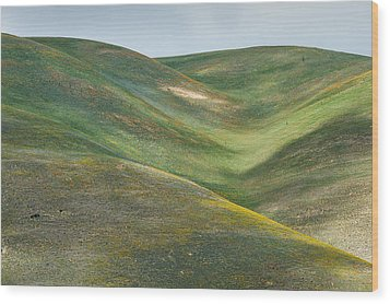 The Hills Of Gorman Ca Wood Print