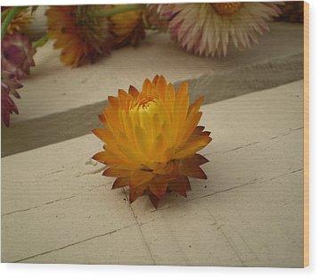 The Holy Flower Wood Print by Fabian Cardon