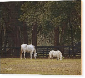 The Horse And The Pony - Standard Size Wood Print by Mary Machare