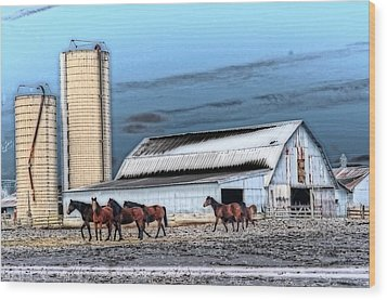 The Horse Barn Wood Print by Cheryl Cencich