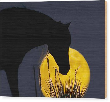 The Horse In The Moon Wood Print