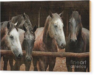 The Horses Wood Print by Angel  Tarantella
