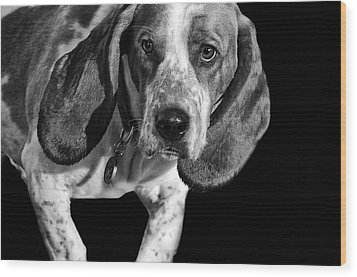 The Hound Wood Print by Camille Lopez