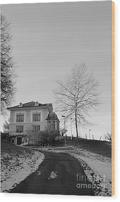 Wood Print featuring the photograph The House On The Hill 2 by Felicia Tica