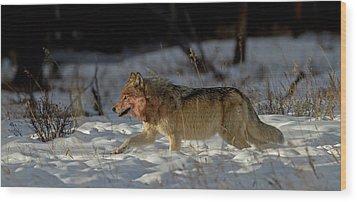 The Hunt Wood Print by Sandy Sisti