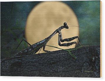 The Hunter Wood Print by Karen Slagle