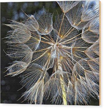 The Inner Weed Paint Wood Print by Steve Harrington