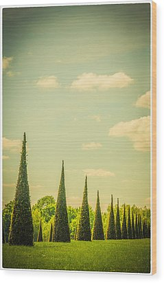 The Knot Garden's Triangular Landscaping Wood Print by Lenny Carter