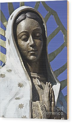 The Lady Prays Wood Print by Terry Rowe
