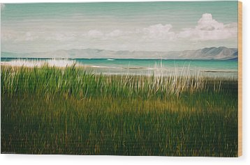 The Lake - Digital Oil Wood Print by Mary Machare
