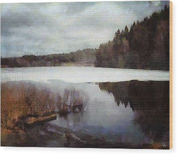 The Lake In My Little Village Wood Print by Gun Legler