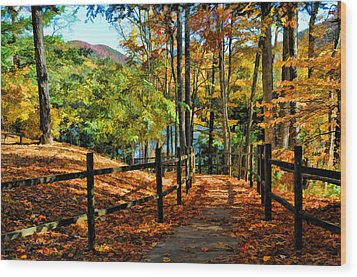 Wood Print featuring the photograph The Lake Path by Kenny Francis