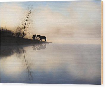 The Lake Shore Wood Print by Ron  McGinnis