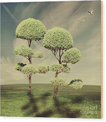 The Land Of The Lollipop Trees Wood Print by Linda Lees