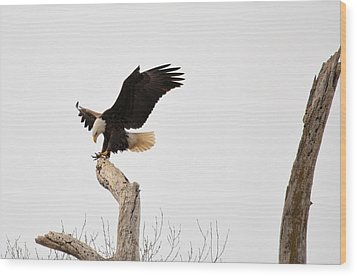 The Landing Wood Print by Bonfire Photography