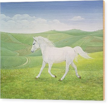 The Landscape Horse Wood Print by Ditz