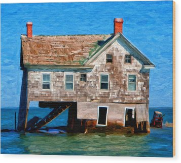 The Last House On Holland Island Wood Print by Michael Pickett