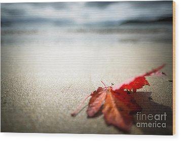 The Last Leaf Wood Print by Susan Cole Kelly Impressions