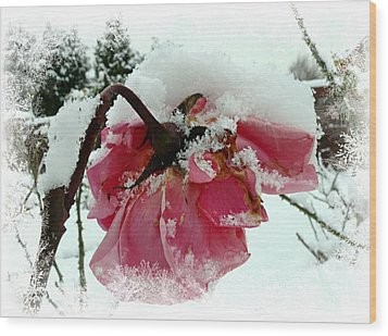 Wood Print featuring the mixed media The Last Rose by Morag Bates