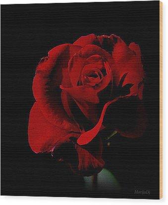 The Last Rose Of  Summer... Wood Print by Marija Djedovic