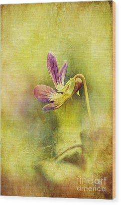 The Last Violet Wood Print by Lois Bryan