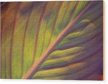 The Leaf No. 2 Wood Print by Richard Cummings