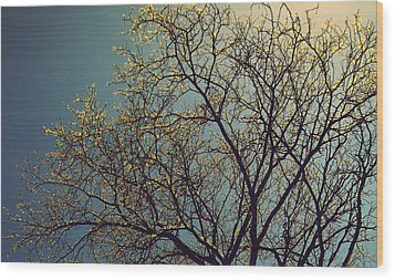 The Leaves Are Returning Wood Print by Jhoy E Meade