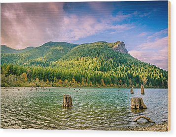 The Ledge Above The Lake Wood Print by Brian Xavier