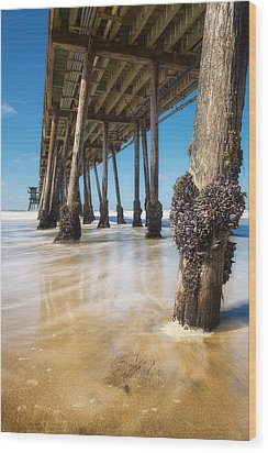 The Life Of A Barnacle Wood Print by Ryan Manuel