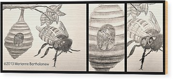 The Life Of The Bee Wood Print by Marianne Bartholomew