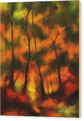 The Lighted Path Wood Print by Alison Caltrider