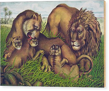 The Lion Family Wood Print by Georgia Fowler