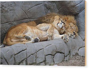 The Lion Sleeps Tonight Wood Print by Eva Kaufman