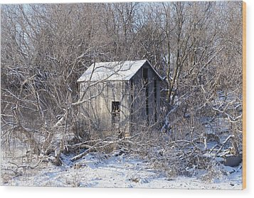 The Little Barn Wood Print by Kristine Bogdanovich
