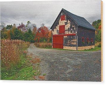 The Little Barn Wood Print by Marcia Colelli