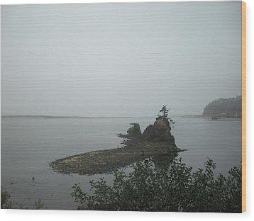 The Little Island Wood Print