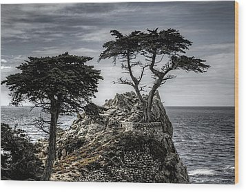 The Lone Cypress Wood Print by Eduard Moldoveanu