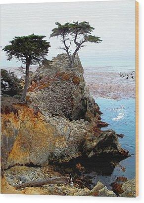 The Lone Cypress - Pebble Beach Wood Print by Glenn McCarthy Art and Photography