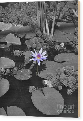 The Lone Flower Wood Print