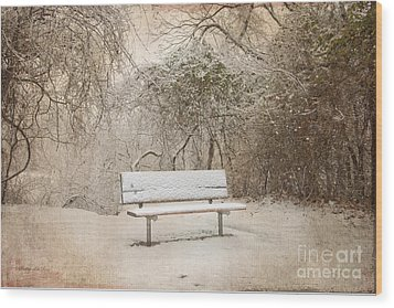 The Lonely Bench Wood Print by Betty LaRue