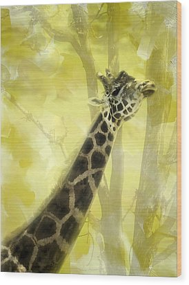 The Long Morning Stretch Wood Print by Diane Schuster