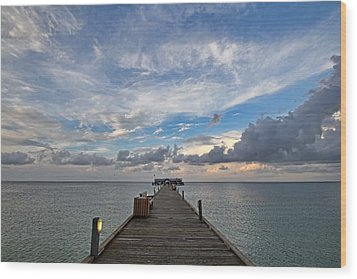 The Long Walk Wood Print by HH Photography of Florida