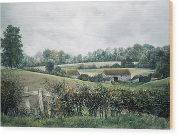 The Lost Hedgerow Wood Print