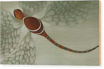 The Magic Puff Dragonfly Wood Print by Constance Krejci