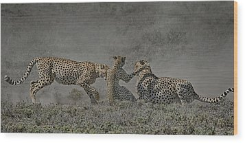 Wood Print featuring the photograph The Mating Game by Gary Hall