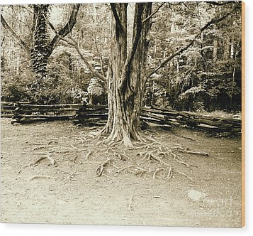 The Matriarch Wood Print by Scott Pellegrin