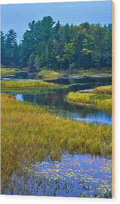 The Meandering Moose River - Old Forge New York Wood Print by David Patterson